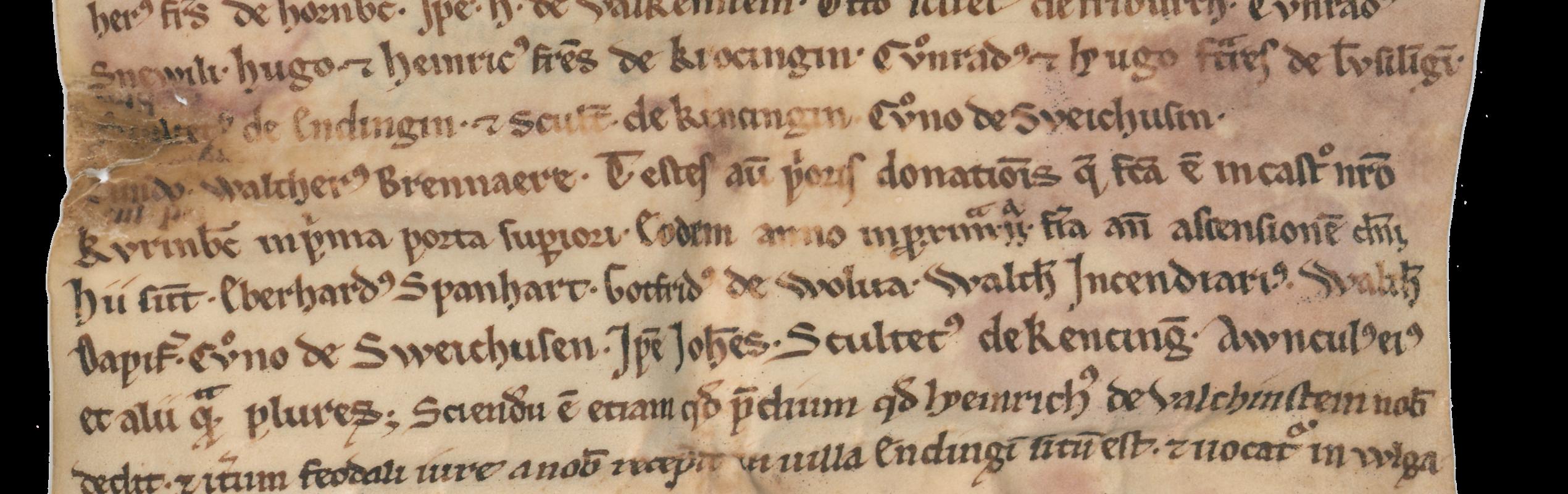 Ausschnitt der Urkunde vom 16. November 1219
